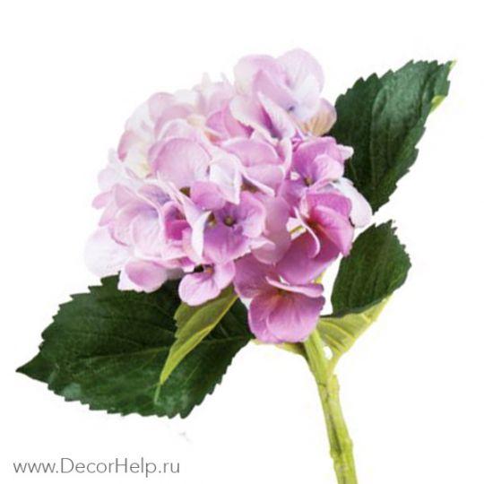 Гортензия пурпурно розовая (10шт) арт: DCH006